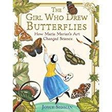 butterflies - Copy